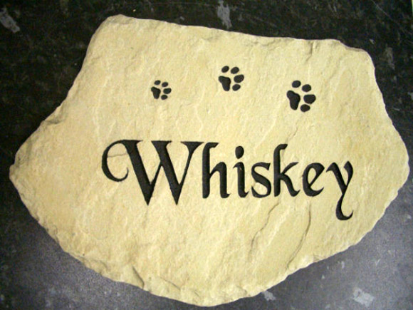 whiskey the cat sandstone memorial
