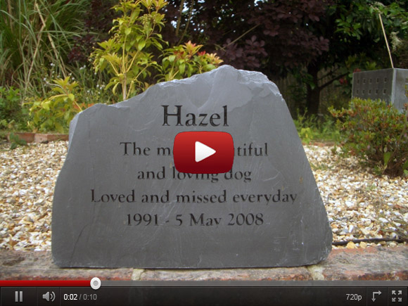 pet memorials on Youtube