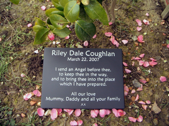 Memorial Plaque in Garden